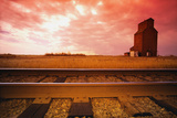 Railroad Tracks Photographic Print
