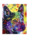 Aus Cattle Dog Giclee Print by Dean Russo