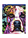 American Bulldog Giclee Print by Dean Russo