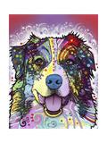 Australian Shepherd Giclee-trykk av Dean Russo