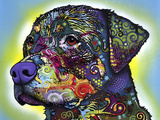 The Rottweiler Giclee Print by Dean Russo