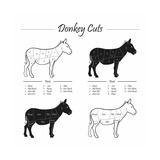 Donkey Cut Scheme - B&W Posters by  ONiONAstudio