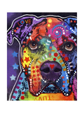 American Bulldog Giclee Print by Dean Russo