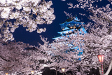 Osaka, Japan at Osaka Castle Park in the Springtime. Photographic Print by  SeanPavonePhoto