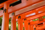 Otorii Partial Close-Up of Otorii in Fushimi Inari Taisha Shrine in Kyoto, Japan. Posters by  elwynn