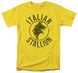 Rocky - Italian Stallion Horse T-Shirt