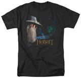 The Hobbit: An Unexpected Journey - The Door T-shirts