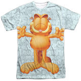 Garfield - Free Hugs Shirts