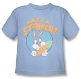 Youth: Baby Looney Tunes -  Ain't I A Stinker Shirts
