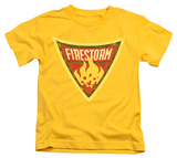 Youth: Batman The Brave and the Bold - Firestorm Shield T-shirts