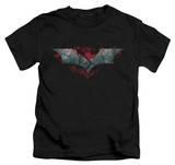 Youth: Dark Knight Rises - Split & Crack Logo Shirt