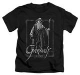 Juvenile: The Hobbit: An Unexpected Journey - Gandalf Stare T-Shirt