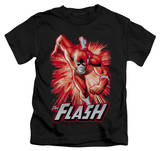 Juvenile: The Flash - Flash Red & Gray T-shirts