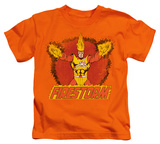 Juvenile: DC Comics - Ring Of Firestorm T-shirts