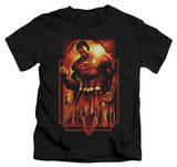 Youth: Superman - Metropolis Deco Shirts