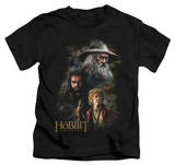 Juvenile: The Hobbit: An Unexpected Journey - Painting T-Shirt