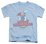 Youth: Woody Woodpecker - Retro Fade T-Shirt