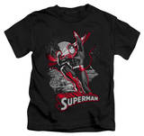 Youth: Superman - Superman Red & Gray T-shirts