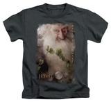 Juvenile: The Hobbit: An Unexpected Journey - Balin Shirt