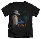 Juvenile: The Hobbit: An Unexpected Journey - The Door Shirt