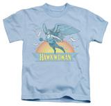 Juvenile: Hawkman - Hawkwoman T-shirts