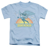 Youth: Hawkman - Hawkwoman T-shirts