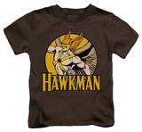 Juvenile: Hawkman - Hawkman Shirt