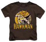 Youth: Hawkman - Hawkman Shirt