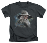 Juvenile: The Hobbit - Gandalf The Grey T-shirts
