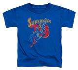 Toddler: Superman - Life Like Action Shirts