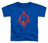 Toddler: Superman - Super Knockout T-shirts