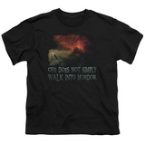 Youth: Lord Of The Rings - Walk In Mordor T-shirts