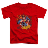 Toddler: Superman - Sorry About The Wall T-shirts