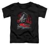 Toddler: Superman - Man Of Steel T-Shirt