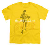 Youth: Rocky - Stallion Swag Shirts