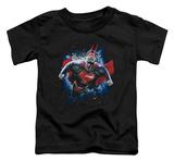 Toddler: Superman - Stardust T-Shirt