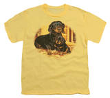 Youth: Wildlife - Picture Perfect Dachshunds T-Shirt