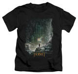 Juvenile: The Hobbit: The Desolation of Smaug - At Smaug's Door Shirts