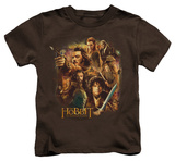 Juvenile: The Hobbit: The Desolation of Smaug - Middle Earth Group T-shirts