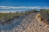 Summer at Cape Cod Posters by  Rolf_52
