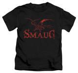 Juvenile: The Hobbit: The Desolation of Smaug - Dragon T-Shirt
