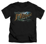 Juvenile: The Hobbit: The Desolation of Smaug - Greetings From Mirkwood T-shirts