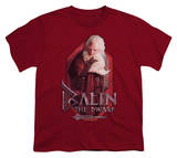 Youth: The Hobbit: An Unexpected Journey - Balin T-shirts