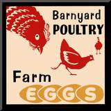 Barnyard Poultry-Farm Eggs Mounted Print