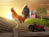 Country Farm Morning Photographic Print by  jgroup