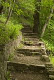 Stone Step Trail Photographic Print by  johnsroad7
