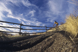 Man Mountain Biking on Countryside Path against Fence and Sky Prints by  Nosnibor137