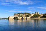 Avignon Bridge with Popes Palace, Pont Saint-B�Nezet, Provence, France Posters by  Zechal