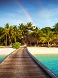 Wooden Bridge to Island Beach Resort, Beautiful Colorful Rainbow over Fresh Green Palm Trees, Luxur Photo by Anna Omelchenko