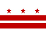 Washington DC Flag Poster Print Stretched Canvas Print